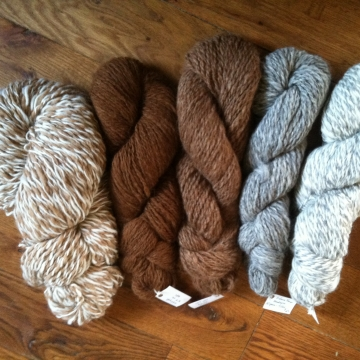 Fiber - Fleece and Yarn