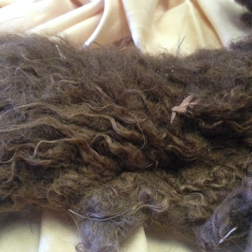 Buffalo Wool - Raw 1 oz
