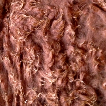 Alpaca Fleece - Hugh 1 Lb